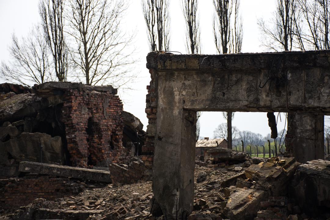 As SS encargáronse de eliminar unha boa parte das probas dos seus crimes antes de deixar os campos de concentración, así sucedeu cas cámaras de gas 2 e 3 de Auschwitz II - Birkenau.