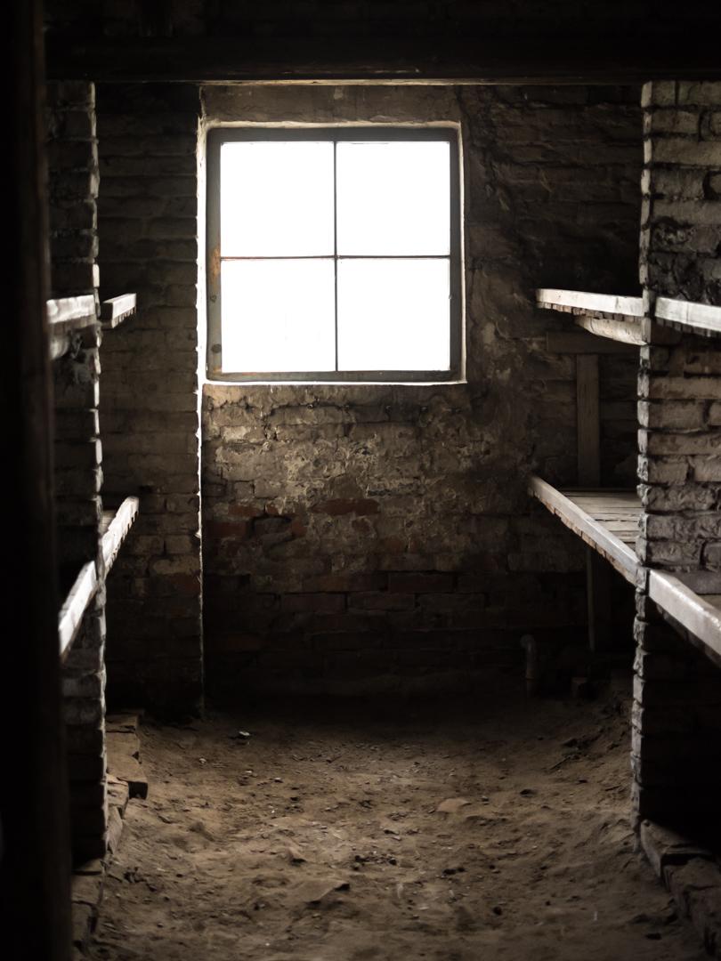 Estar dentro é sinónimo de escuridade e morte. A profunda escuridade que se proxecta impide ver a luz deslumbrante dun exterior irreal. Estamos en Auschwitz II (Birkenau) - Barracón da morte (25).
